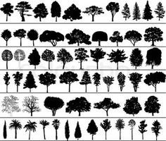 Buy Vector Trees by ntnt on GraphicRiver. Set of black silhouettes of vector trees Pine Tree Silhouette, Black Silhouette, Mountain Silhouette, Silhouette Tattoos, Piercing Tattoo, Piercings, Vector Trees, Nature Tattoos, Skin Art