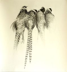 4 Pheasants, Szachary Martin