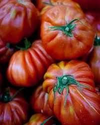 gascony recipes fantastic tomatos