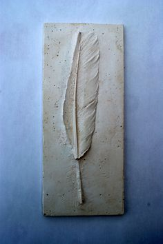 Plaster cast of a feather