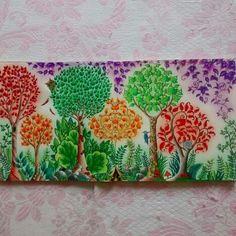 Página dupla - floresta encantada