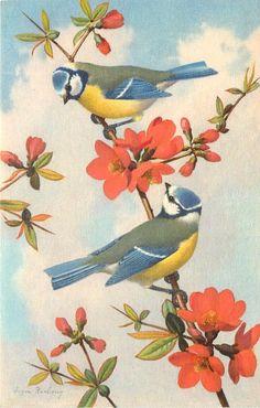 Vintage postcard by Eugen Hartung | eBay