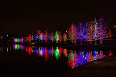 8) Vitruvian Lights - Magical Night of Lights (Addison)