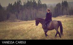 Vanessa Cardui | Orkan Film