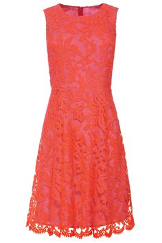 Buy Neon Lace Dress from the Next UK online shop