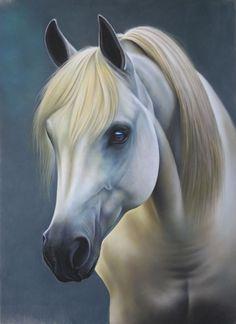 Résultats de recherche d'images pour « croquis cheval BLANC A PEINDRE »