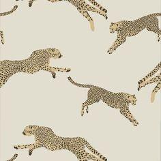 Scalamandre Leaping Cheetah Dune Wallpaper