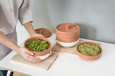 New from Ikea: A Terra Cotta Sprouter to Grow Microgreens