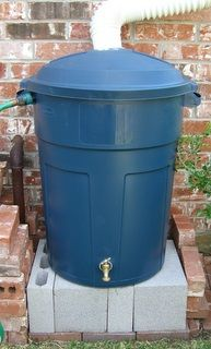 Trash can rain barrel. Water the garden for free with rain!