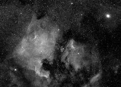 North American Nebula & Deneb