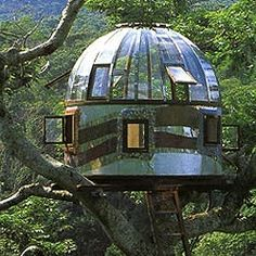treehouse with a view on all sides.