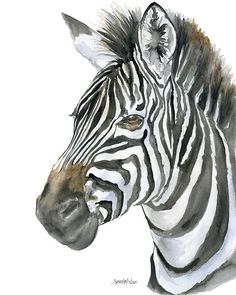 Zebra watercolor giclée reproduction. Head shot of another of my African animals.Portrait/vertical orientation. Printed on fine art paper using archival pigment