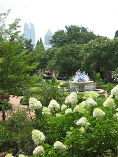 Romantic Things to Do in Atlanta: http://thingstodo.viator.com/atlanta/romance-in-atlanta/
