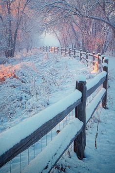 SEASONAL – WINTER – a new-fallen snow appears so peaceful, but still gives me the chills, photo by johnny gomez. Winter Szenen, Winter Love, Winter Magic, Winter Christmas, Winter Sunset, Winter Photography, Nature Photography, Foto Picture, Photos Voyages