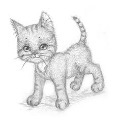 How to Draw a Kitten? - The Idea King Love Drawings, Animal Drawings, Pencil Drawings, Art Drawings, Drawing Animals, Drawing Skills, Drawing Reference, Cat Drawing Tutorial, Bff