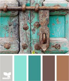 color pallets - Ideal middle colour in room with wainscoting half way up the wall painted white.