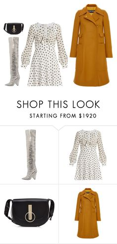"""""""Untitled #5906"""" by amberelb ❤ liked on Polyvore featuring Yves Saint Laurent, Miu Miu, Nina Ricci and Rochas"""