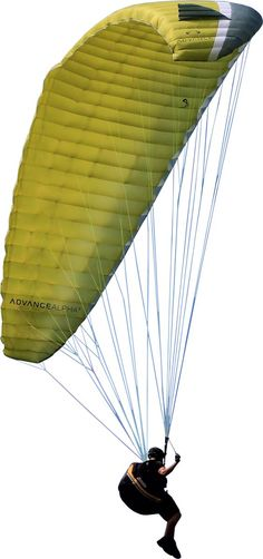 Paraglider: