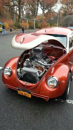 I don't ever remember any of my bugs having a motor like that...wow!!...lol.