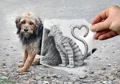 Dog and Cat Amazing Pencil Vs Camera series from Ben Heine   He is an outstanding photographer