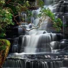 Somersby Falls by Bruce Hood, via 500px NSW Austrailia