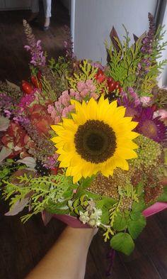 #podzim #venkov #slunečnice