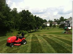 Time-Saving Lawn Care Tips for Your Big Backyard | Simplicity Mowers