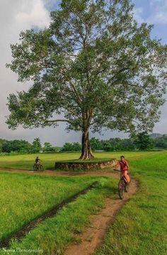 ideas travel photography asia life for 2019 Village Photography, Landscape Photography, Nature Photography, Travel Photography, Babies Photography, Village Photos, India Culture, Punjab Culture, Amazing India