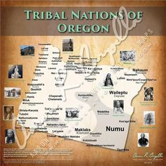 The Oregon State Department of Education is mandating that American Indian History be taught in schools from the Native peoples perspective. Native American Quotes, Native American Symbols, Native American History, American Indians, American Women, American Art, Oregon Map, State Of Oregon, North America Map