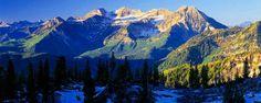 Utah,I want ya!