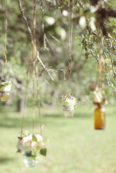hanging flowers from tree