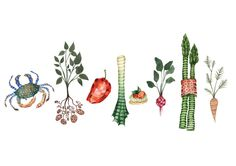 Food Illustrations - Holly Clifton-Brown