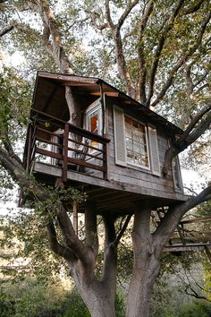 Yess! This is how I always pictured my tree house! Except with a little rope ladder attached to it!