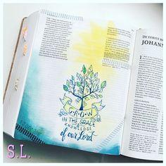 2 Peter 3:18  / saralindenhols