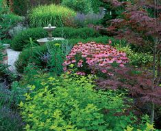 Be Bold with Fine Texture - Airy plants add space. Fine-textured plants have several functions, including the ability to make a garden feel more spacious by seeming to recede into the background (great article) Landscape Borders, Landscape Design, Landscape Architecture, Design Patio, Garden Design, Slimming World, Spas, Fine Gardening, Urban Gardening