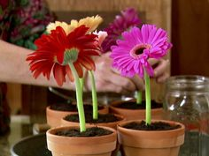 Ice Cream Flower Pot Desserts. Great for my girls birthday party.From FoodNetwork.com