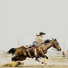 """""""Jamás hay que utilizar la violencia para que un caballo perfeccione sus capacidades; sino alternar con delicadeza: exigencias y recompensas; multiplicar los cumplimientos y reducir los castigos"""""""