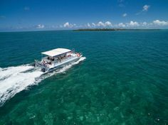 Experience the Difference with Island Dream Tours aboard YOLO with full day snorkeling cruises to Hol Chan Marine Reserve, Shark Ray Alley and the Belize Barrier Reef.