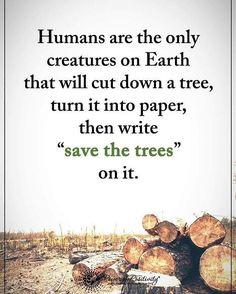 Tree Quotes Nature Sad 66 Ideas For 2019 Environment Quotes, Save Environment, Tree Quotes, Save Our Earth, Power Of Positivity, Nature Quotes, Earth Day Quotes, Climate Change, Food For Thought