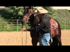 Bob Avila discusses elements of a Broke Horse from Professional Choice| EquiSearch Video Library