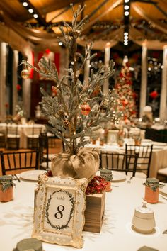 December Wedding Ideas You NEED To See! - Glittery Bride - December Wedding Ideas You NEED To See! – Glittery Bride A Gorgeous December Wedding Full of Christmas Wedding Ideas – Glittery Bride Floral Wedding, Wedding Bouquets, Wedding Flowers, Chalkboard Wedding, Wedding Table Centerpieces, Flower Centerpieces, Centerpiece Ideas, Flower Arrangements, Table Decorations
