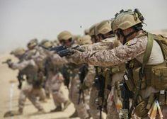 USMC...MARSOC 1 Battalion