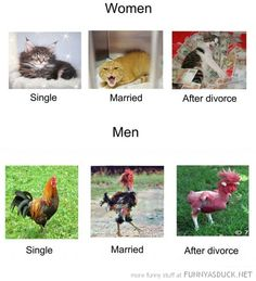 Random Musings: Women: Your Post-Marriage Lifestyle
