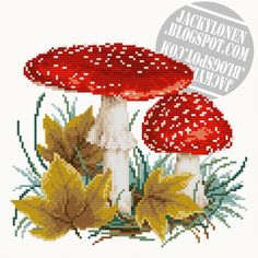 Fly Agaric (free pattern)