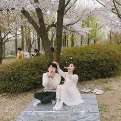 봄, 벚꽃엔딩 그리고 선유도공원 : 네이버 블로그