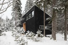 This Russian House Blends Into Its Woodland Location