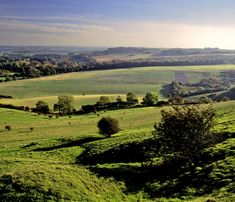 Hertfordshire - what a stunning scene #englishcountryside #lifeafterlondon