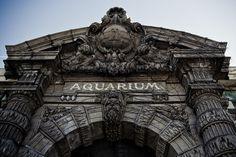 Belle Isle Aquarium