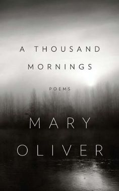 A Thousand Mornings by Mary Oliver.  A new Mary Oliver book of poetry is always deliciously delightful.
