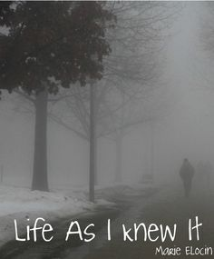 New Book Coming from Marie Elocin. Check it out on facebook!    http://www.facebook.com/LifeAsIKnewIt?__adt=14#!/LifeAsIKnewIt